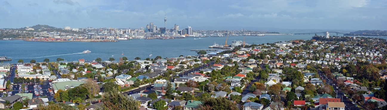 Building Inspection Services Auckland Wide