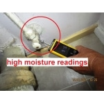 moisture testing