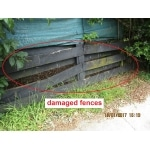inspection reveals damaged fences