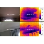 pre purchase building inspection - showing moisture testing
