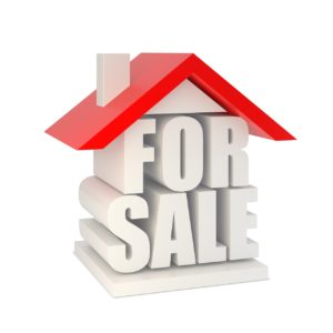 a house for sale needs a pre-purchase building report